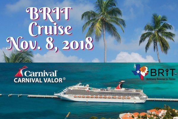 Charity Fundraiser Cruise – BRIT
