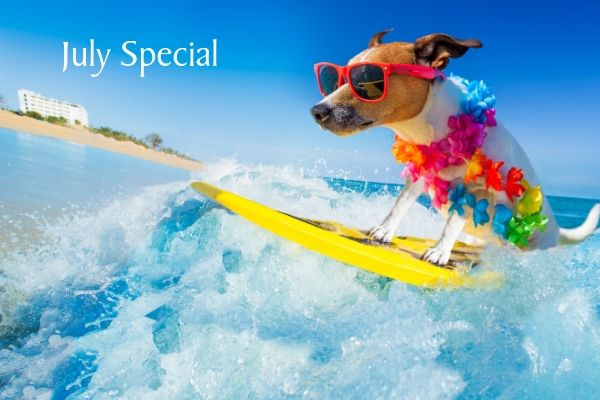 July Special – FREE Onboard Credits